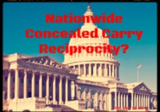 Concealed Carry Reciprocity Act of 2017