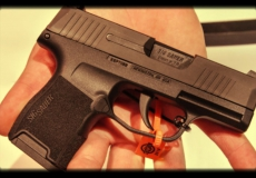 New Sub-Compact Carry Pistols for 2018